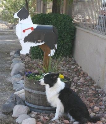 """Penny"" with her Mailbox"