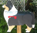Tri Color Sheltie Mailbox