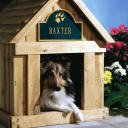personalized Dog and cat Name plaques, dog mailboxes