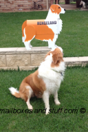 red Border Collie Mailbox custom