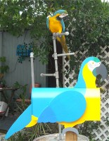 Chuckles ... my macaw and her mailbox